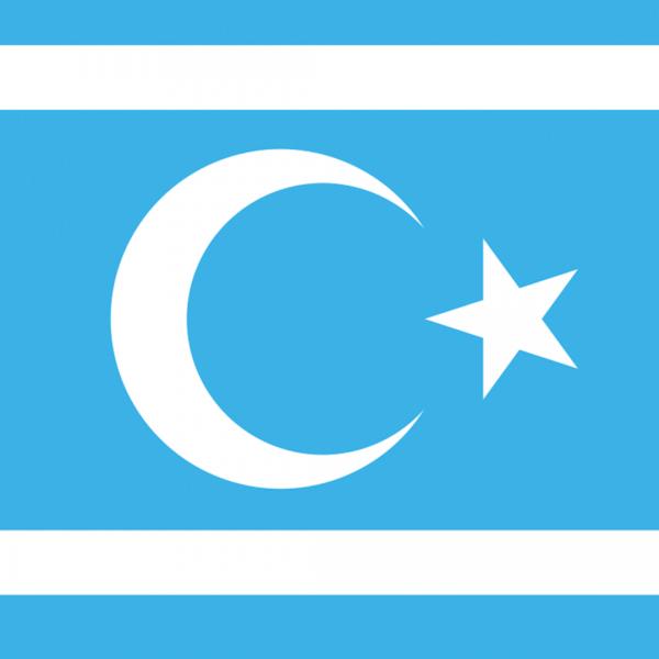 Türkmeneli Bayrağı - 75cm x 105cm
