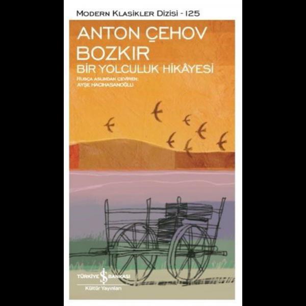 Bozkır Bir Yolculuk Hikayesi - Anton Pavloviç Çehov
